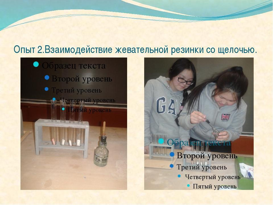 Опыт 2.Взаимодействие жевательной резинки со щелочью.