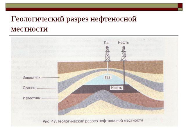 Геологический разрез нефтеносной местности