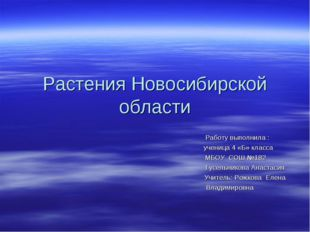 Растения Новосибирской области Работу выполнила : ученица 4 «Б» класса МБОУ С