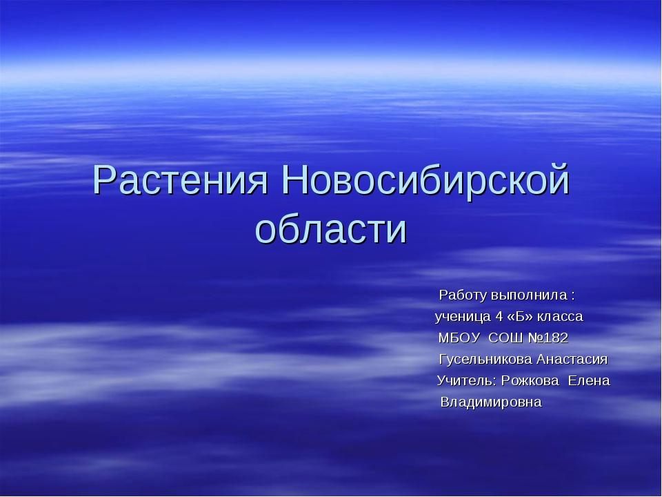 Растения Новосибирской области Работу выполнила : ученица 4 «Б» класса МБОУ С...