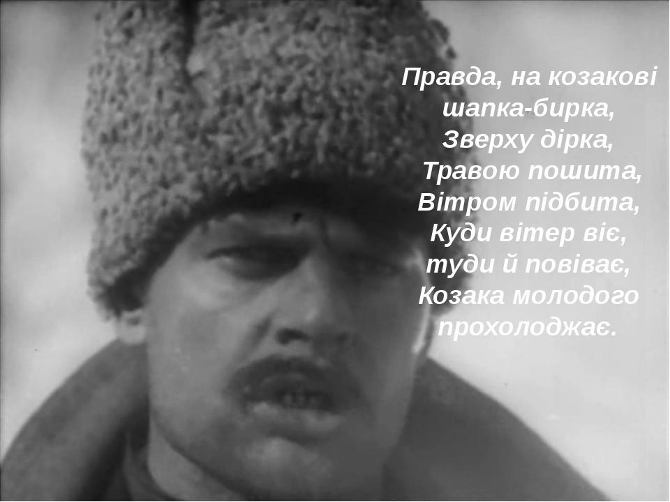 Правда, на козакові шапка-бирка, Зверху дірка, Травою пошита, Вітром підбита,...