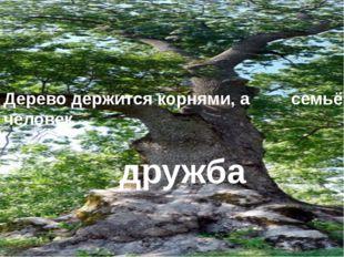 Дерево держится корнями, а человек семьёй дружба