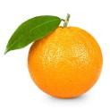 http://www.intaliadv.ru/sites/intaliadv.ru/files/apelsiny_10.jpg