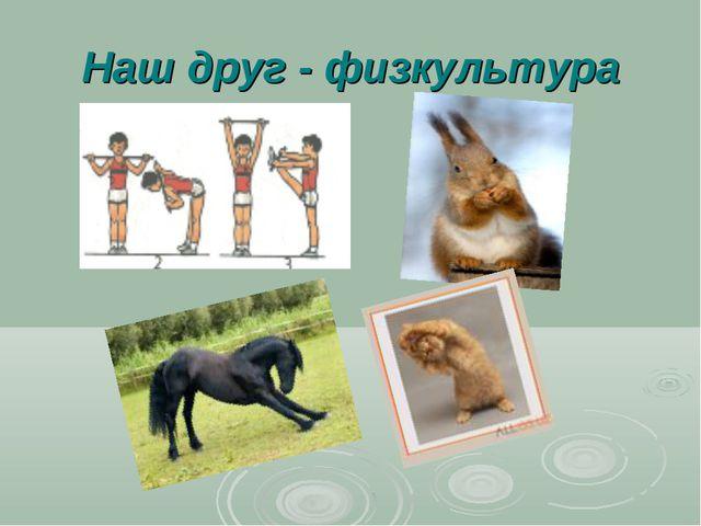 Наш друг - физкультура
