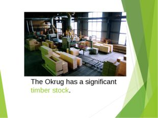 The Okrug has a significant timber stock.