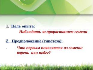 Цель опыта: 2. Предположение (гипотеза): Наблюдать за прорастанием семени Чт