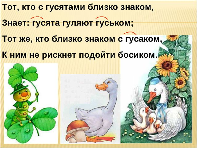 Тот, кто с гусятами близко знаком, Знает: гусята гуляют гуськом; Тот же, кто...