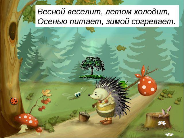 Весной веселит, летом холодит, Осенью питает, зимой согревает.