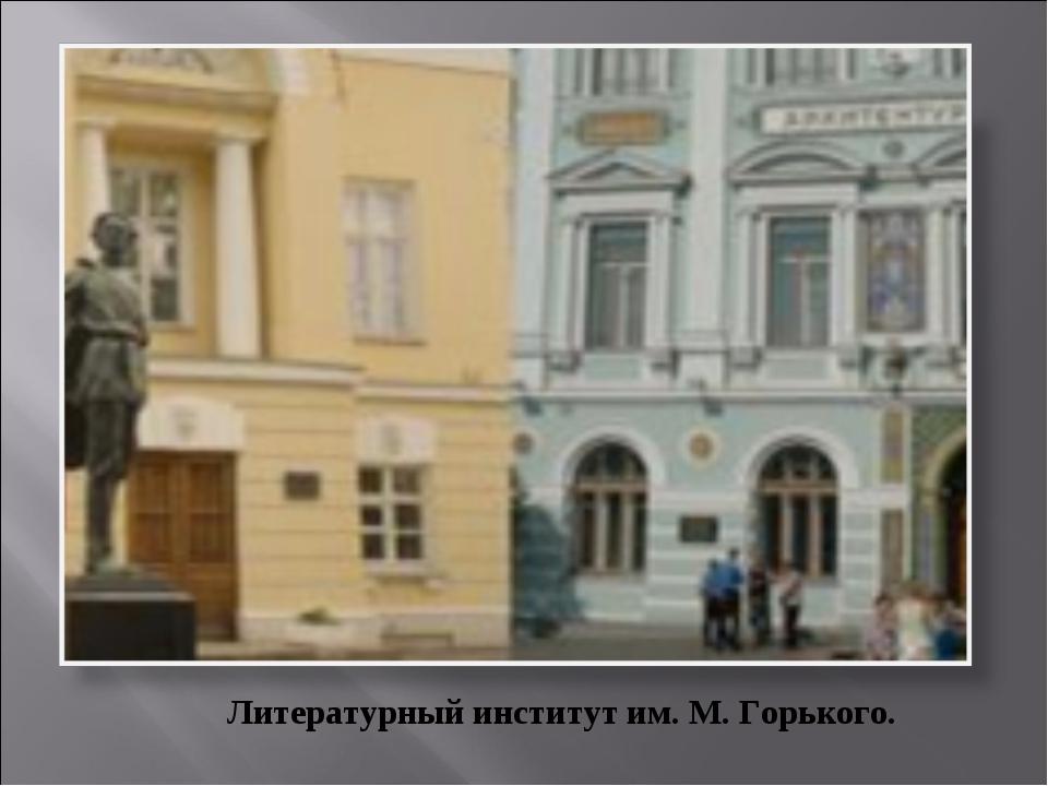 Литературный институт им. М. Горького.