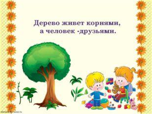 Дерево живет корнями, а человек -друзьями.