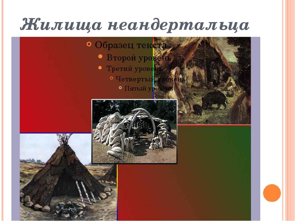 Жилища неандертальца