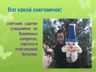 Вот какой снеговичок! Снеговик сделан учащимися из бумажных салфеток, картон