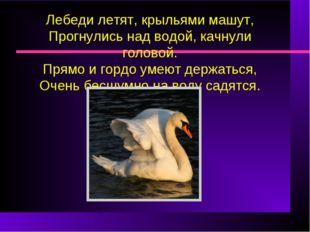 Лебеди летят, крыльями машут, Прогнулись над водой, качнули головой. Прямо и