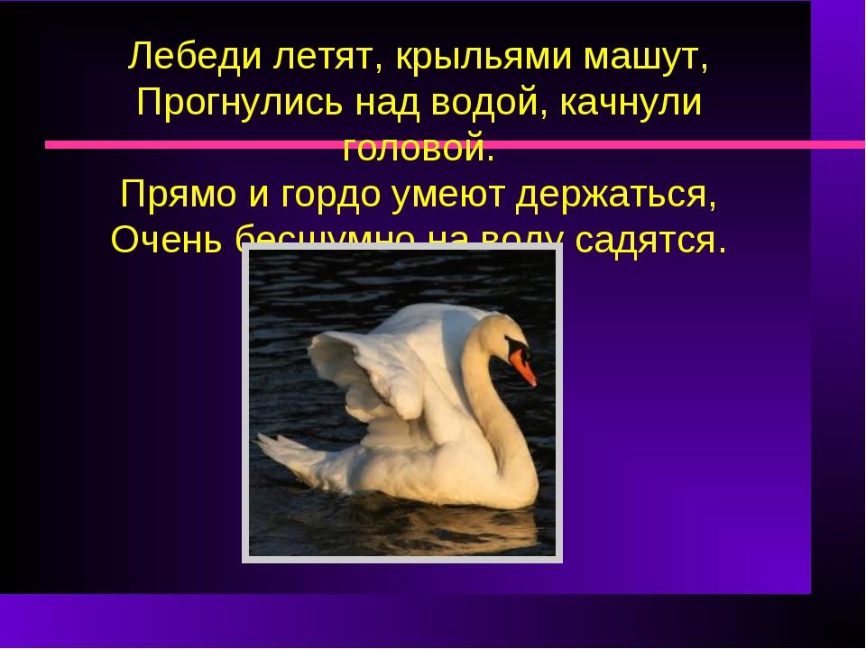 Лебеди летят, крыльями машут, Прогнулись над водой, качнули головой. Прямо и...