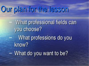 Our plan for the lesson What professional fields can you choose? What profess