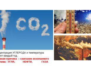 Концентрация УГЛЕРОДА и температура растет каждый год. Главная причина – сжиг
