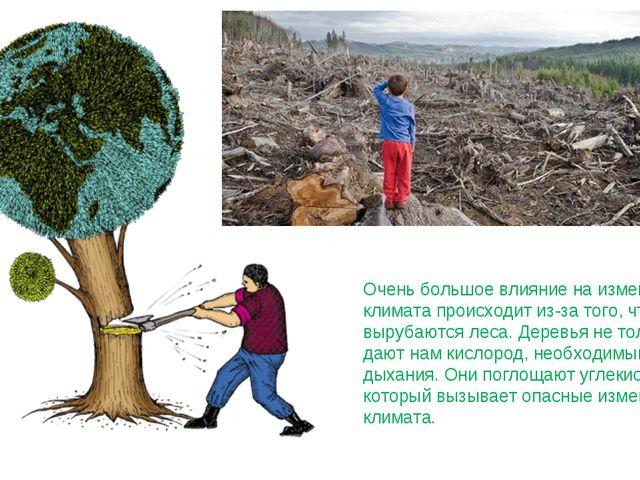 Очень большое влияние на изменение климата происходит из-за того, что вырубаю...