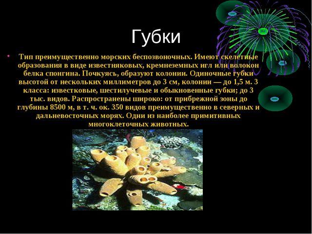 Губки Тип преимущественно морских беспозвоночных. Имеют скелетные образования...