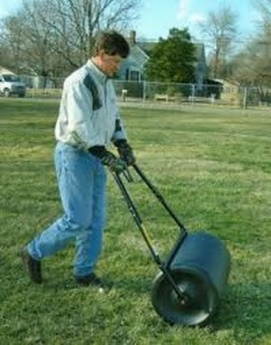 Week 10 - Early Mid-Mar lawn tips