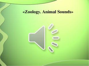 «Zoology. Animal Sounds»