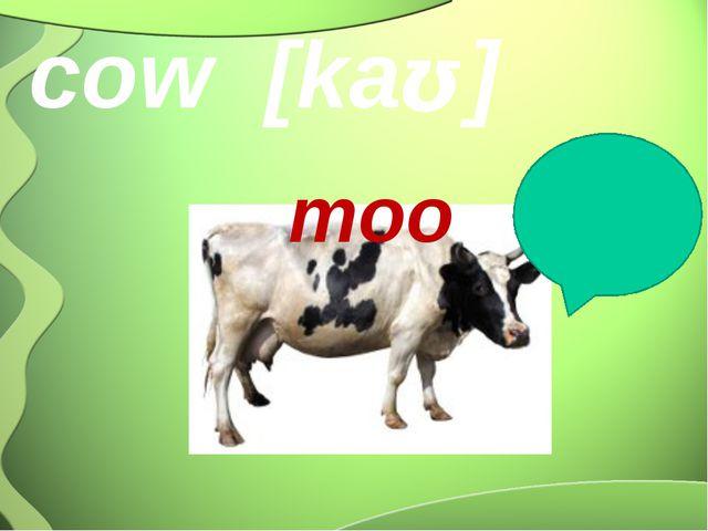 cow [kaʊ] moo