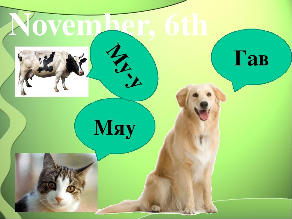 November, 6th Мяу Гав Му-у