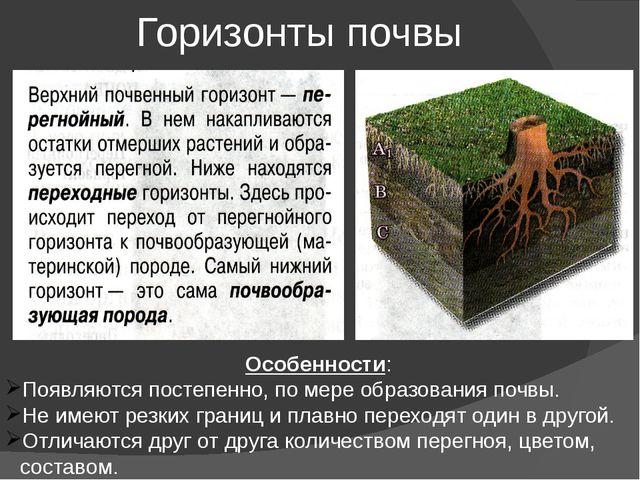Горизонты почвы Особенности: Появляются постепенно, по мере образования почвы...