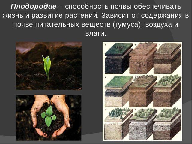Плодородие – способность почвы обеспечивать жизнь и развитие растений. Зависи...