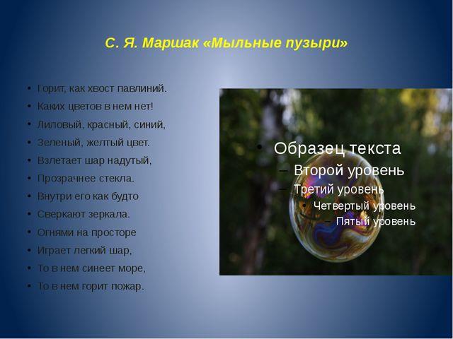 С. Я. Маршак «Мыльные пузыри» Горит, как хвост павлиний. Каких цветов в нем...
