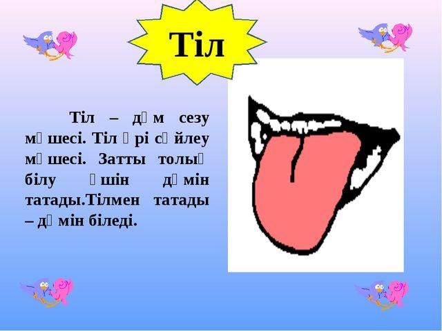 Тіл Тіл – дәм сезу мүшесі. Тіл әрі сөйлеу мүшесі. Затты толық білу үшін дәмі...