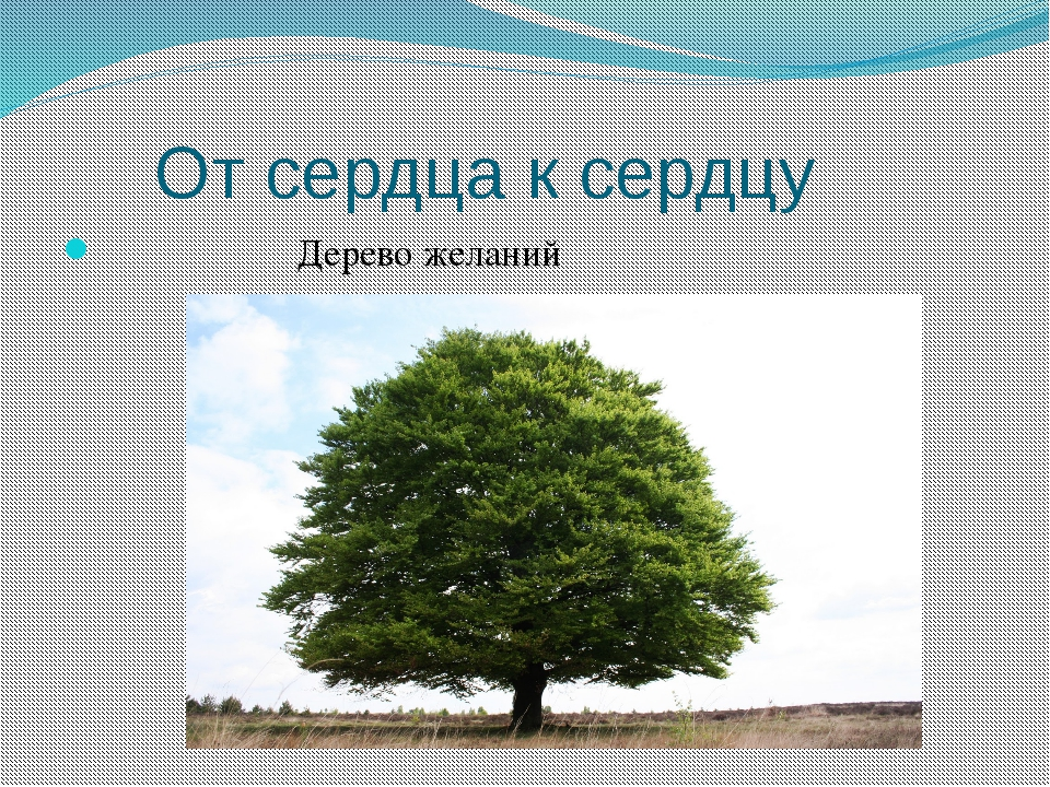 От сердца к сердцу Дерево желаний