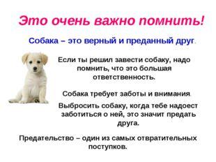 Это очень важно помнить! Собака – это верный и преданный друг. Если ты решил