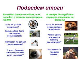 Подведем итоги Вы много узнали о собаках, о их породах, о том как они помогаю