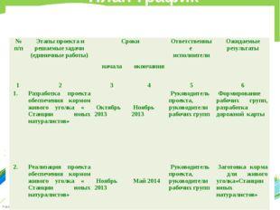 План-график реализации единичного проекта № п/п Этапы проекта и решаемые зад
