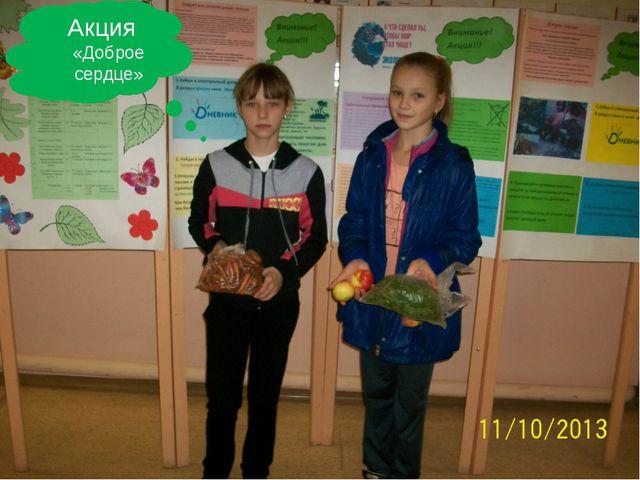 Акция «Доброе сердце» FokinaLida.75@mail.ru