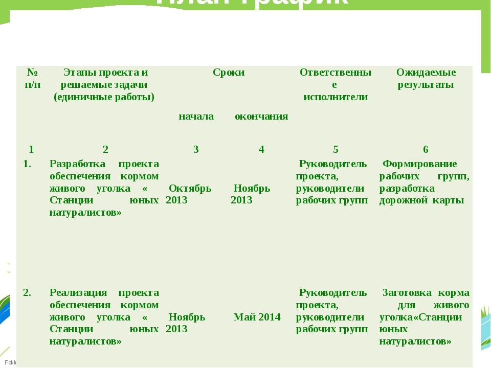План-график реализации единичного проекта № п/п Этапы проекта и решаемые зад...