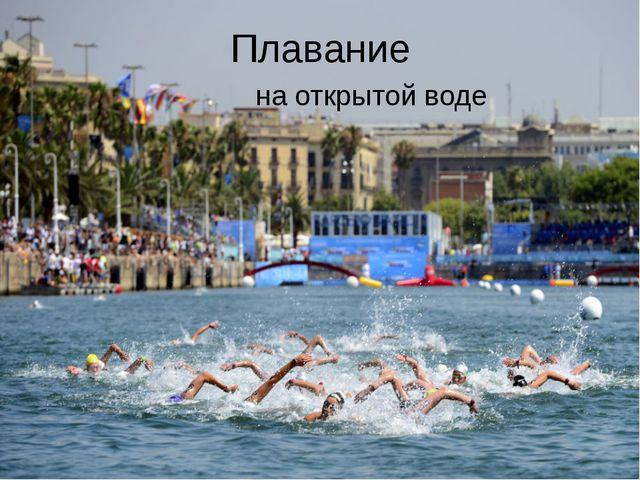 Плавание на открытой воде