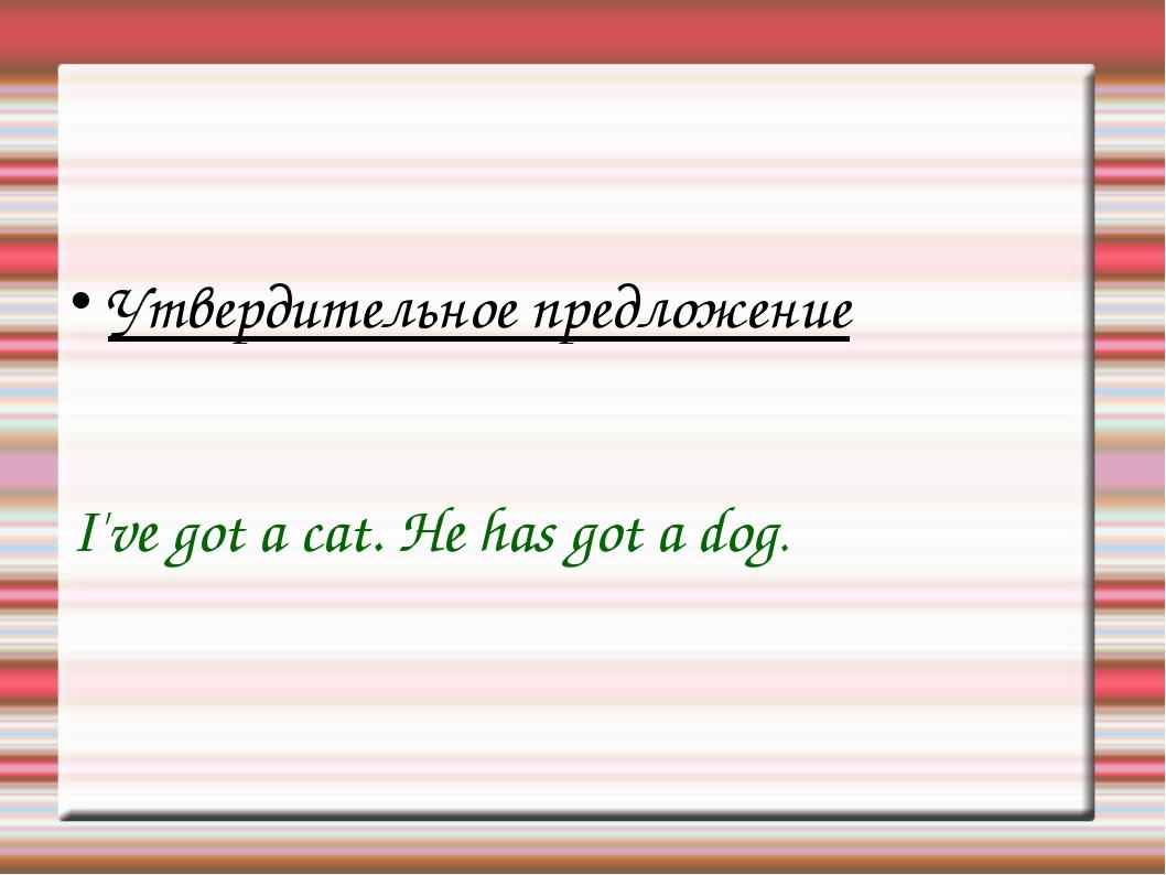 Утвердительное предложение I've got a cat. He has got a dog.