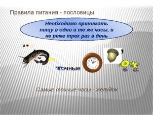 Правила питания- пословицы Самые точные часы - желудок Необходимо принимать