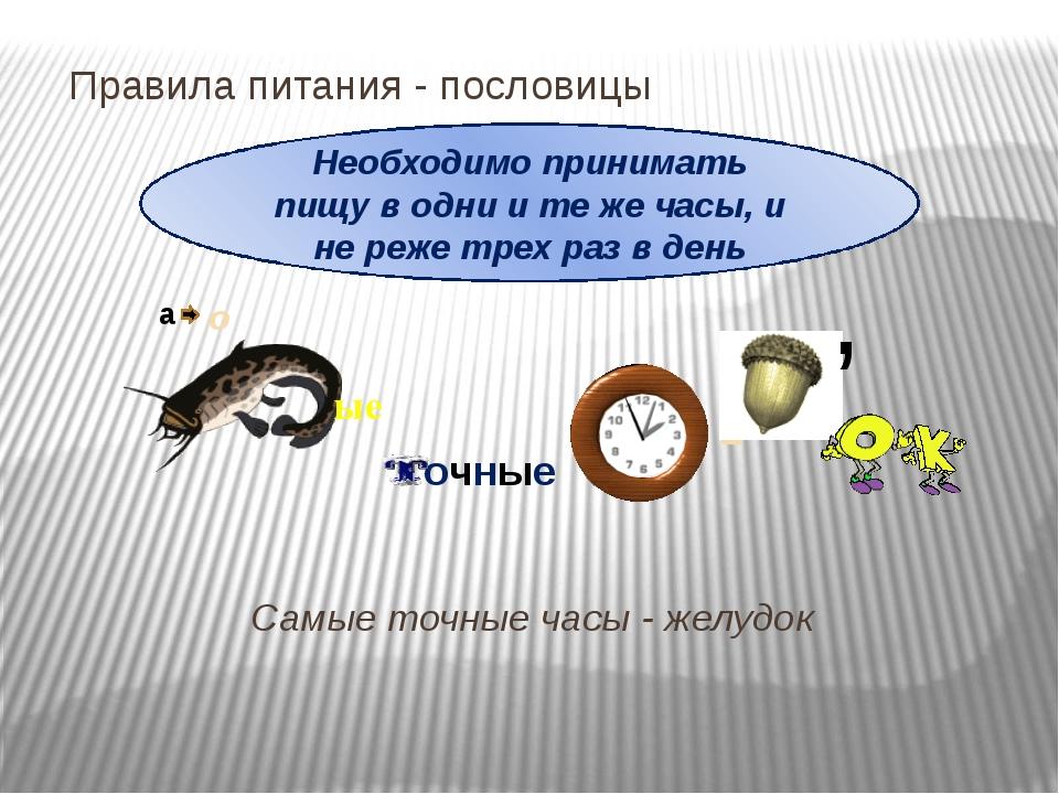 Правила питания- пословицы Самые точные часы - желудок Необходимо принимать...