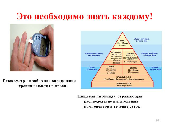 Пищевая пирамида, отражающая распределение питательных компонентов в течение...