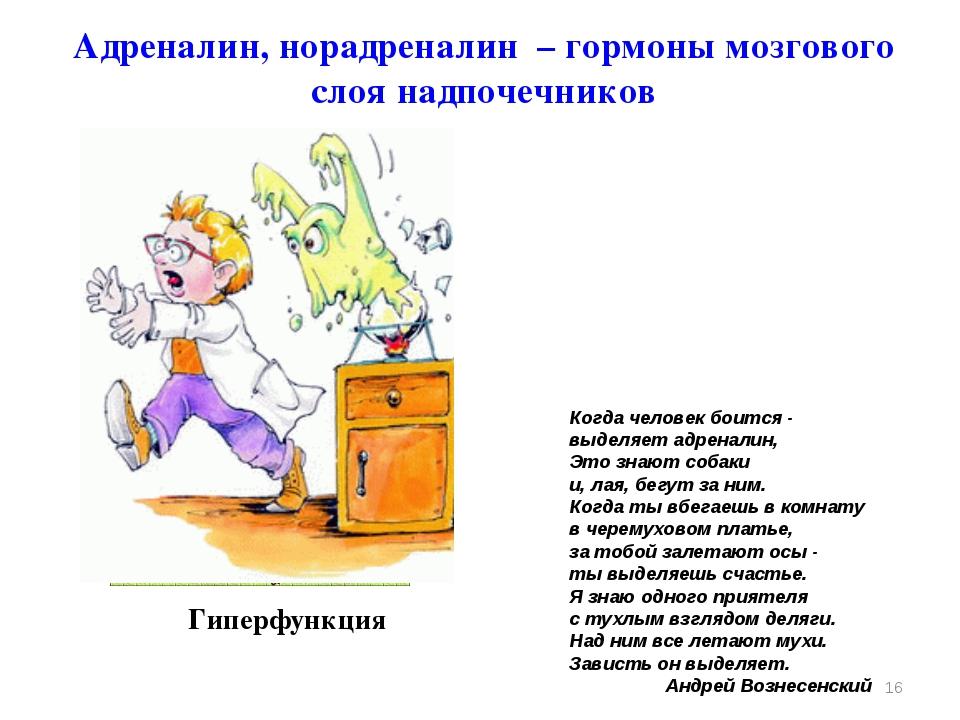 Гиперфункция * Адреналин, норадреналин – гормоны мозгового слоя надпочечников...