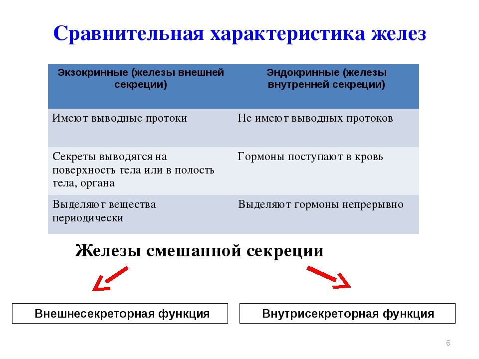 Сравнительная характеристика желез * Внешнесекреторная функция Внутрисекрет...