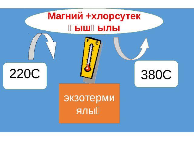 Магний +хлорсутек қышқылы 220С 380С экзотермиялық
