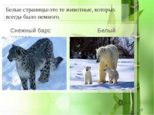 Белые страницы-это те животные, которых всегда было немного. Снежный барс Бе