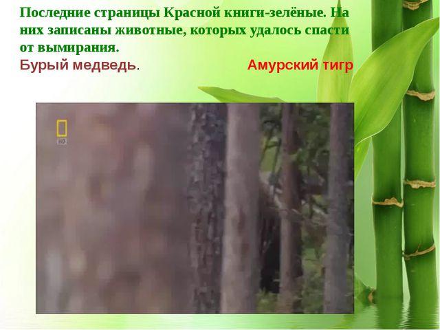 ggggg Последние страницы Красной книги-зелёные. На них записаны животные, кот...