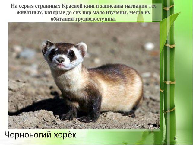 На серых страницах Красной книги записаны названия тех животных, которые до...
