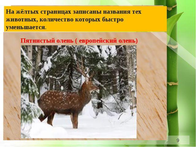 На жёлтых страницах записаны названия тех животных, количество которых быстр...