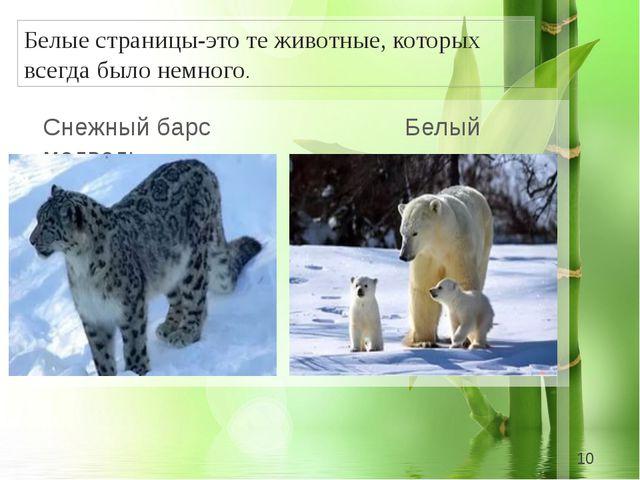 Белые страницы-это те животные, которых всегда было немного. Снежный барс Бе...