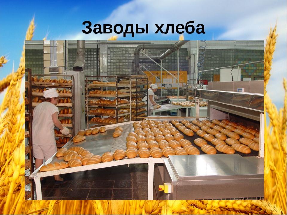 Заводы хлеба